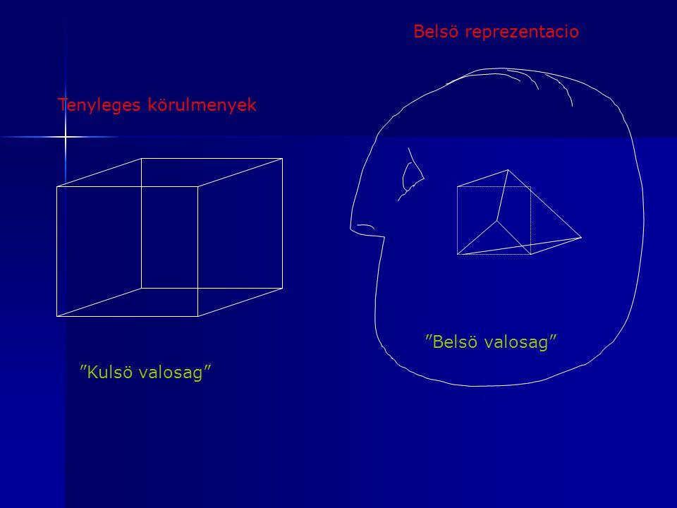 Belsö reprezentacio Tenyleges körulmenyek Belsö valosag Kulsö valosag