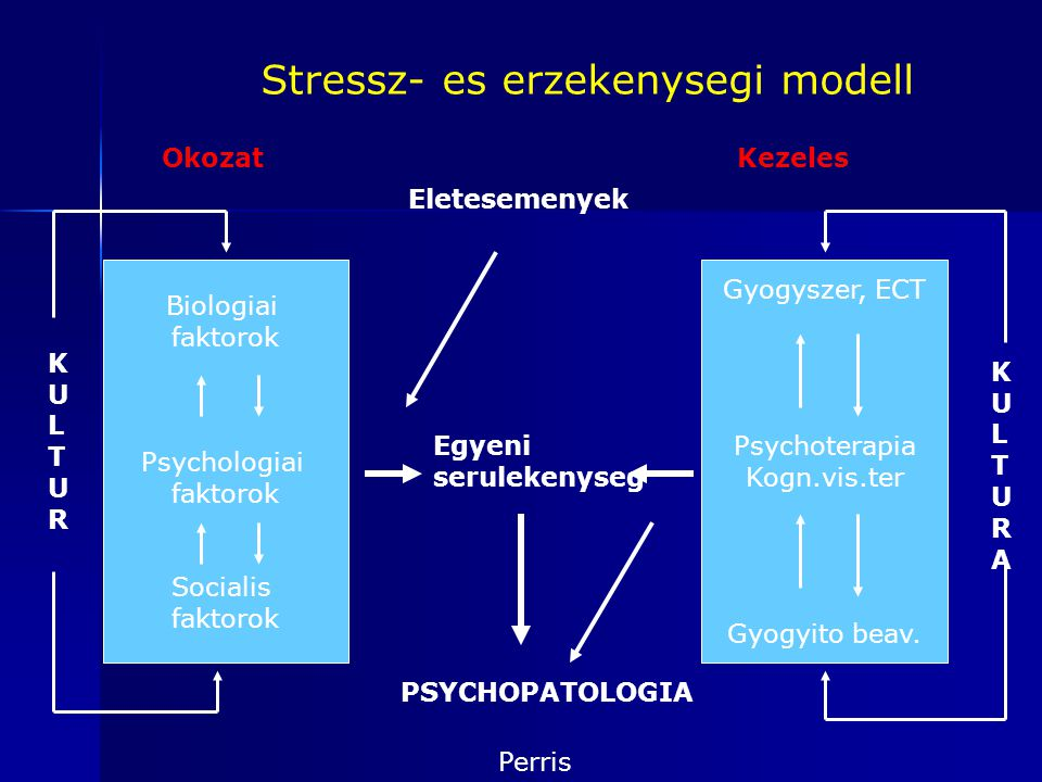 Stressz- es erzekenysegi modell