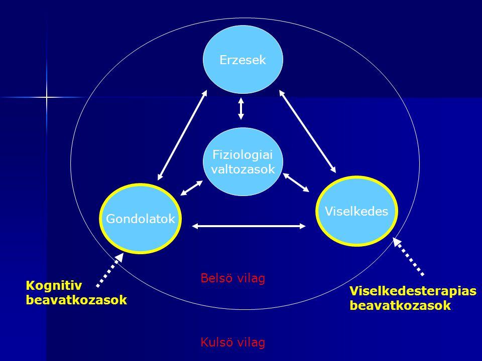 Erzesek Fiziologiai. valtozasok. Viselkedes. Gondolatok. Belsö vilag. Kognitiv. beavatkozasok.