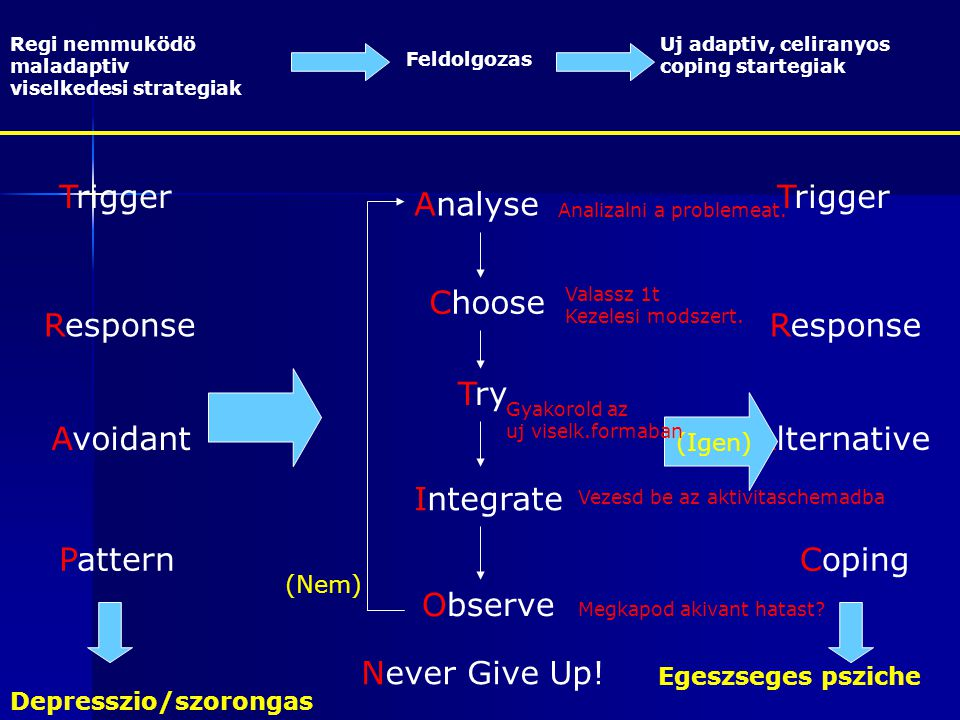 Trigger Trigger Analyse Choose Response Response Try Avoidant