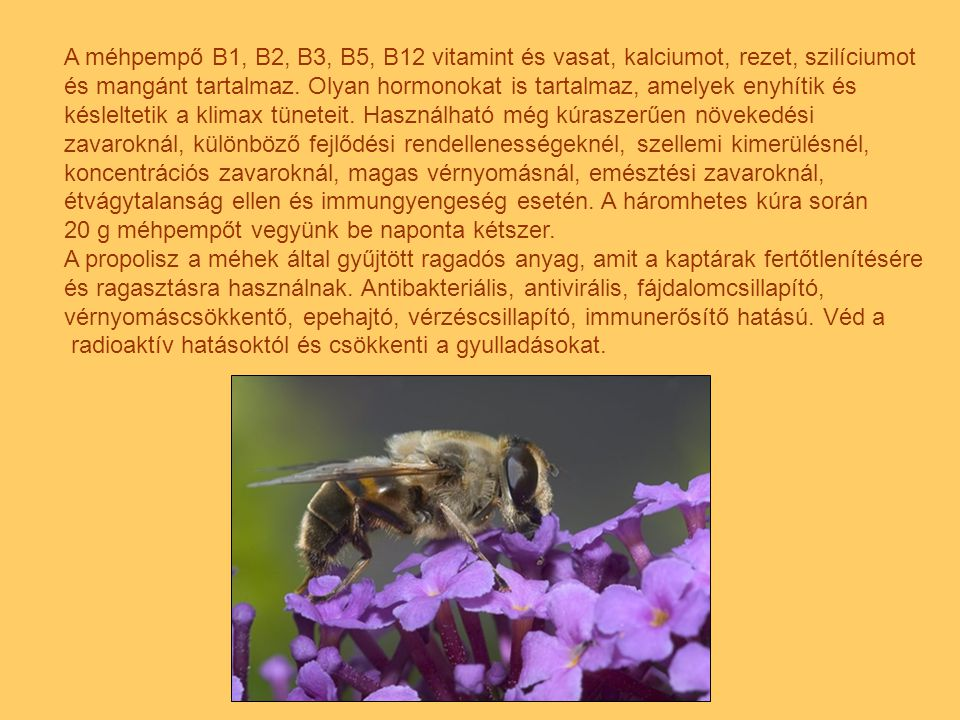 A méhpempő B1, B2, B3, B5, B12 vitamint és vasat, kalciumot, rezet, szilíciumot