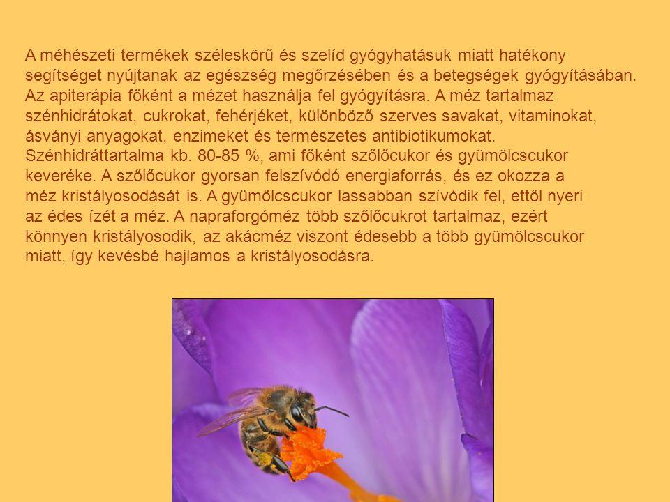 A méhészeti termékek széleskörű és szelíd gyógyhatásuk miatt hatékony