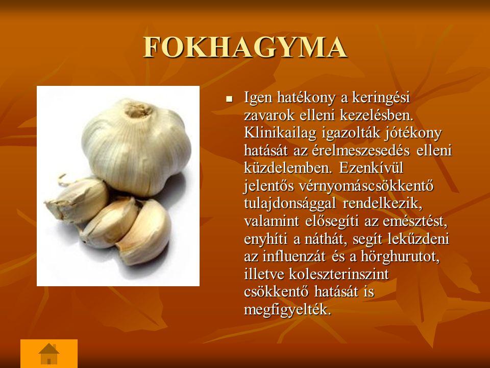 FOKHAGYMA