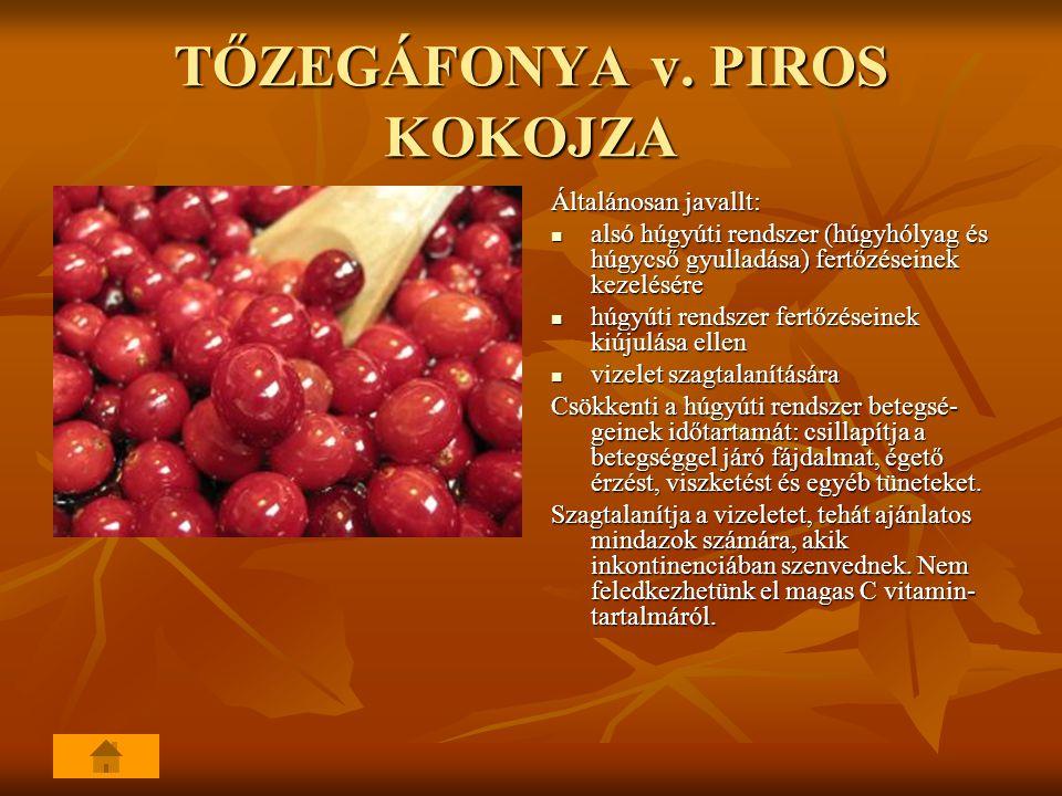 TŐZEGÁFONYA v. PIROS KOKOJZA