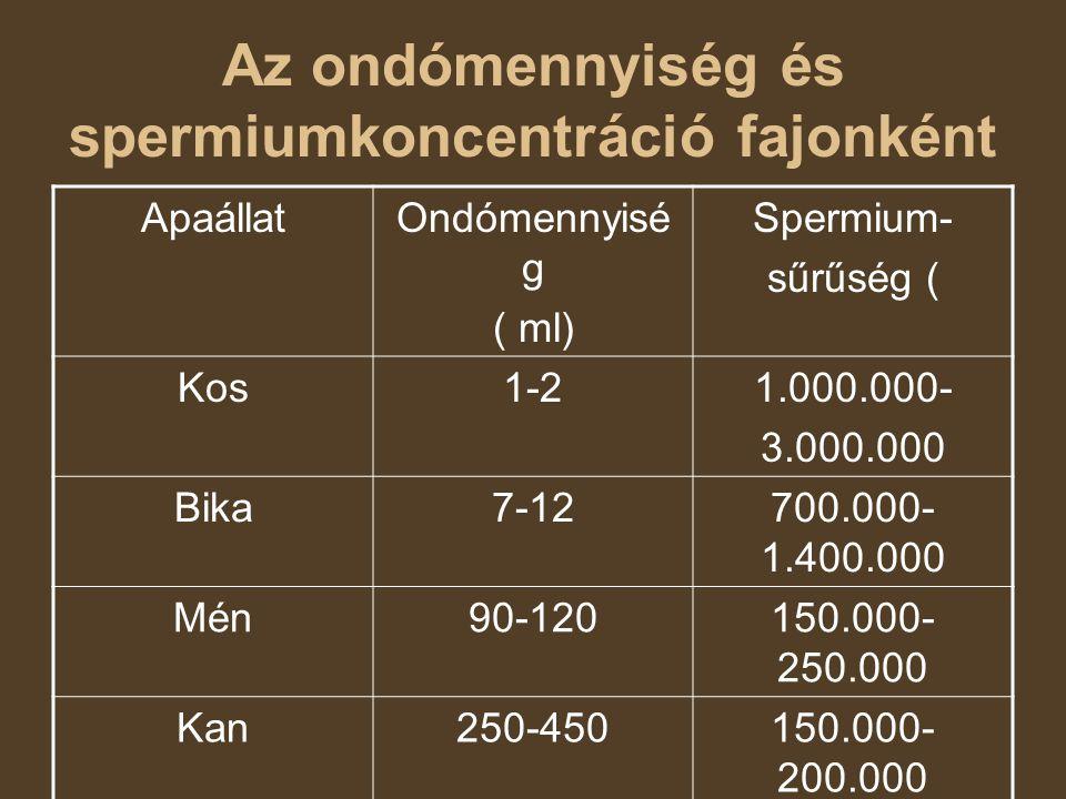 Az ondómennyiség és spermiumkoncentráció fajonként