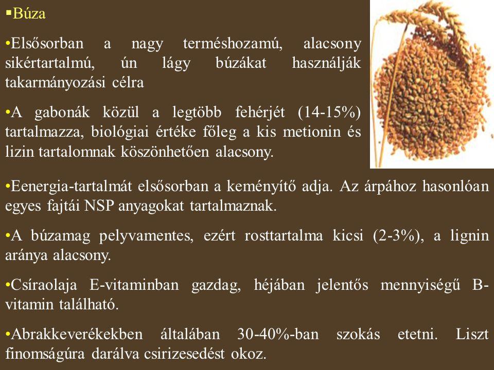 Búza Elsősorban a nagy terméshozamú, alacsony sikértartalmú, ún lágy búzákat használják takarmányozási célra.