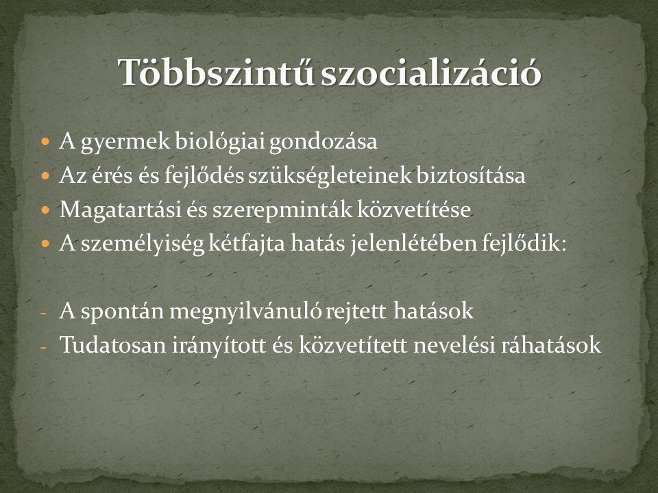 Többszintű szocializáció
