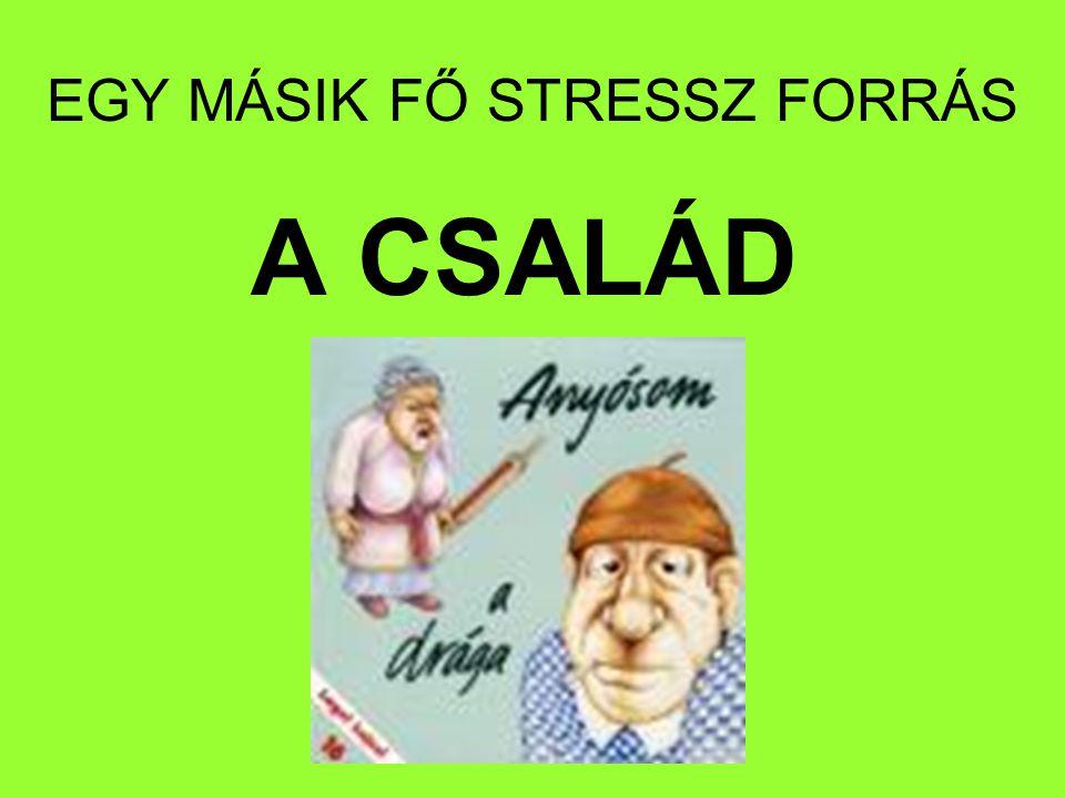 EGY MÁSIK FŐ STRESSZ FORRÁS
