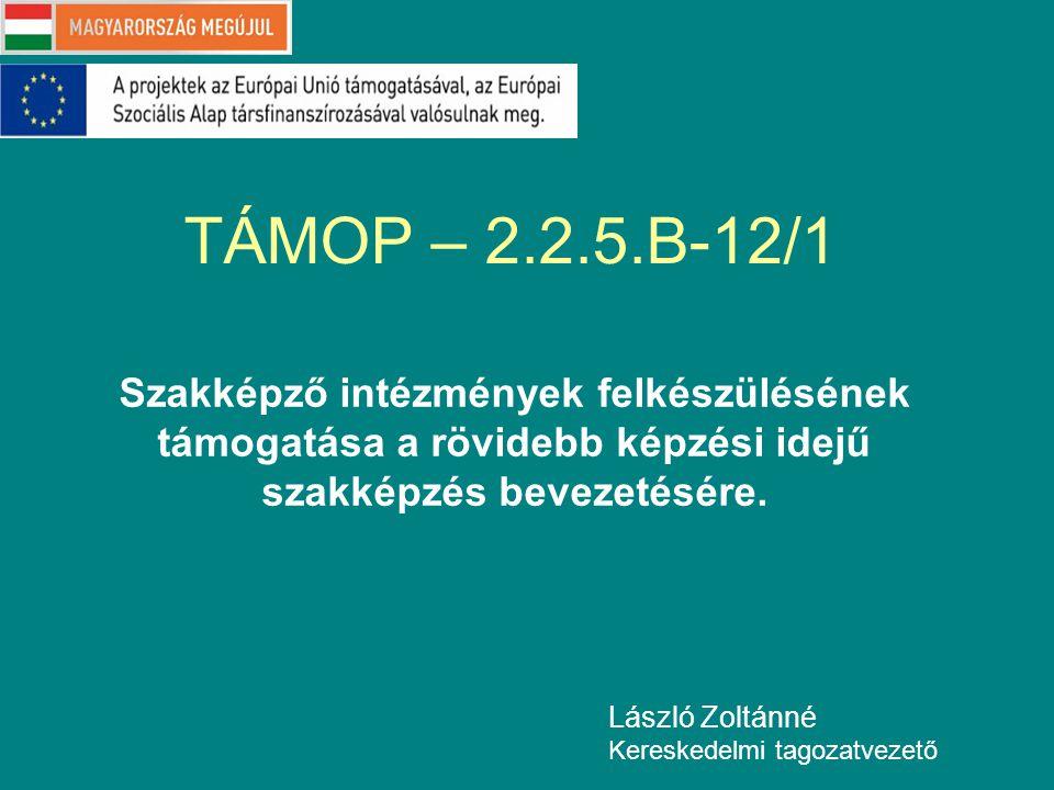 TÁMOP – 2.2.5.B-12/1 Szakképző intézmények felkészülésének támogatása a rövidebb képzési idejű szakképzés bevezetésére.