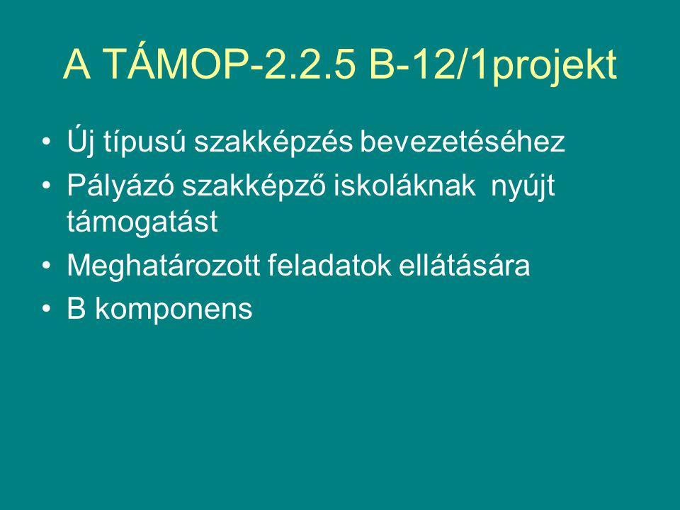 A TÁMOP-2.2.5 B-12/1projekt Új típusú szakképzés bevezetéséhez