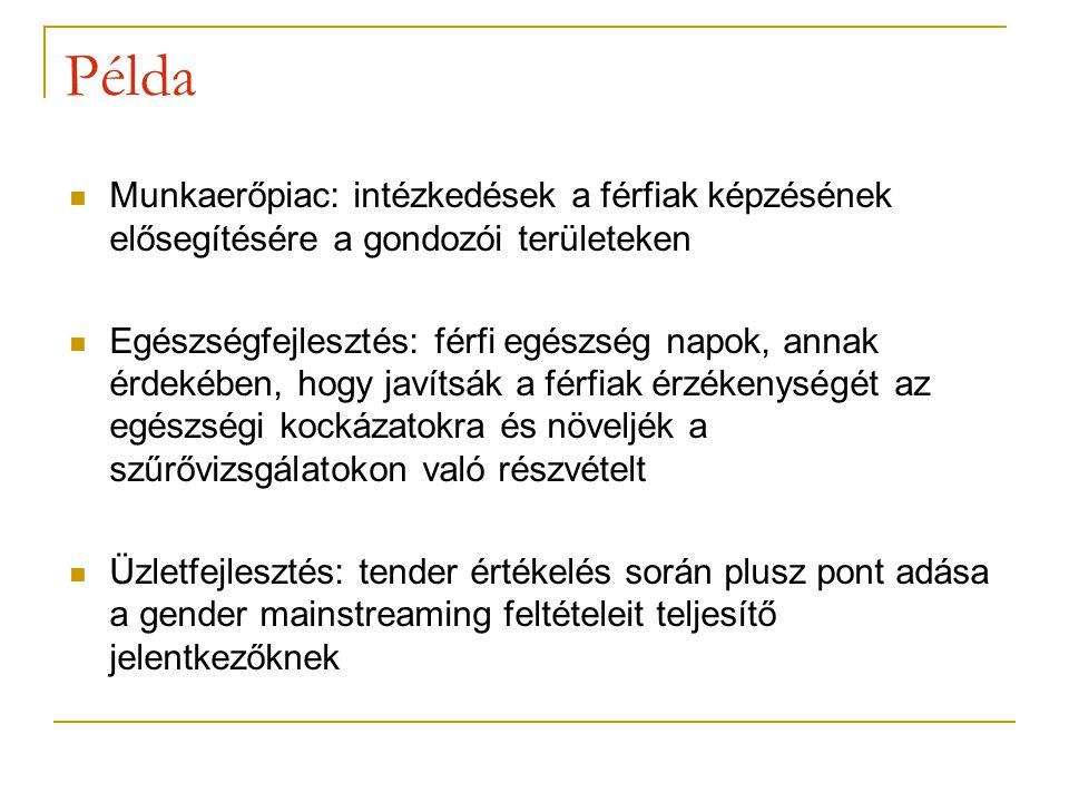 Példa Munkaerőpiac: intézkedések a férfiak képzésének elősegítésére a gondozói területeken.