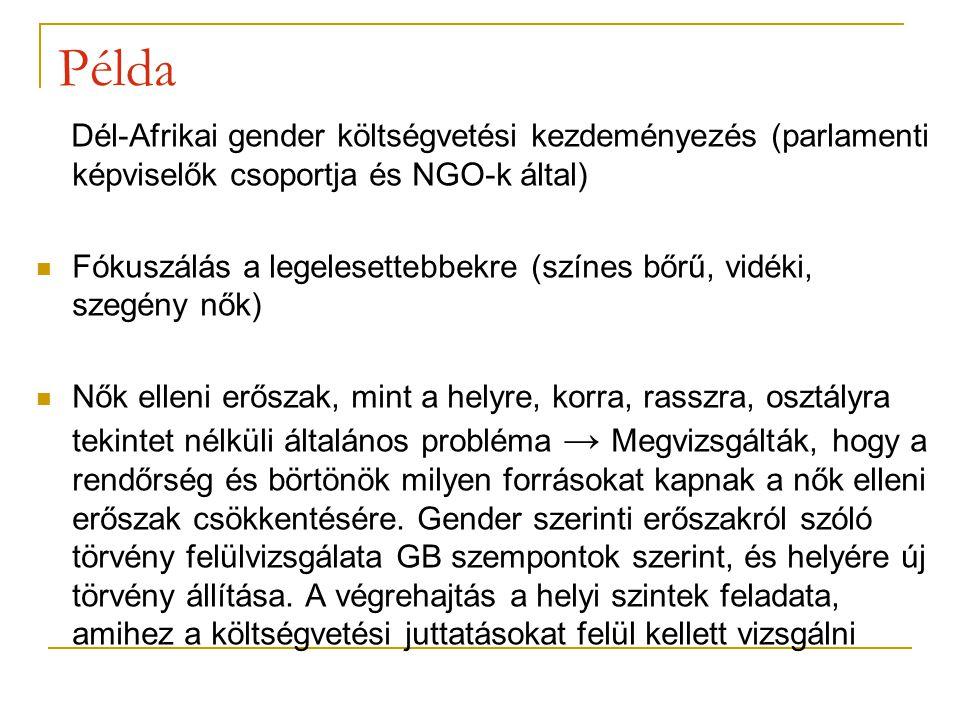 Példa Dél-Afrikai gender költségvetési kezdeményezés (parlamenti képviselők csoportja és NGO-k által)
