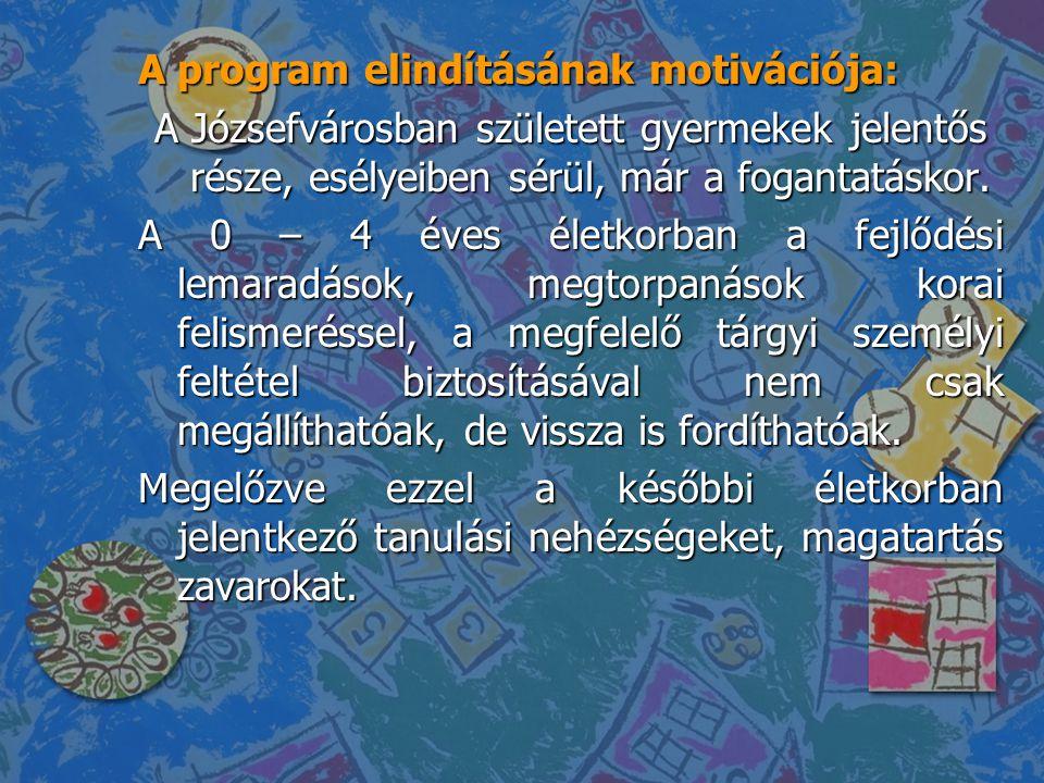 A program elindításának motivációja: