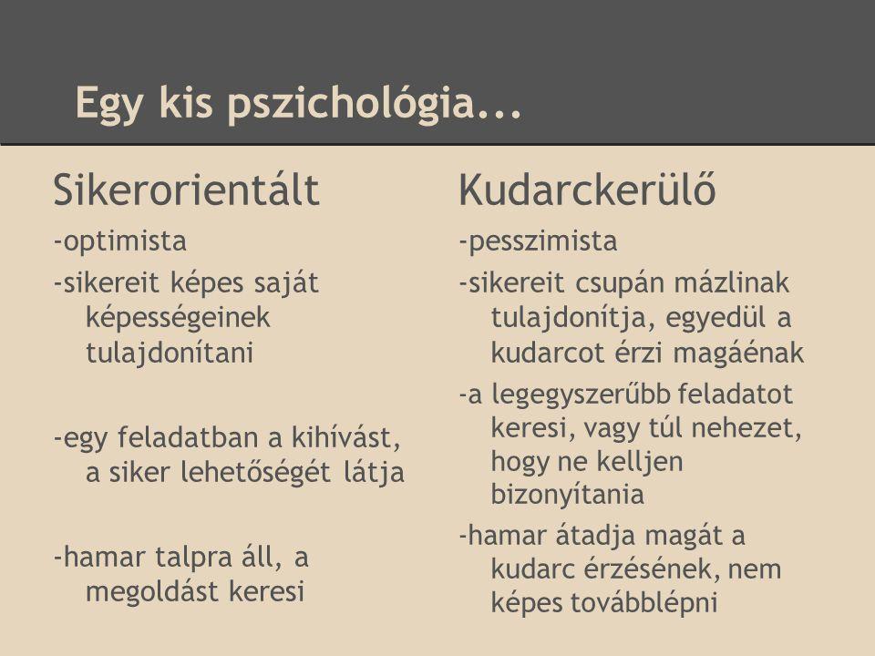 Egy kis pszichológia... Sikerorientált Kudarckerülő -optimista