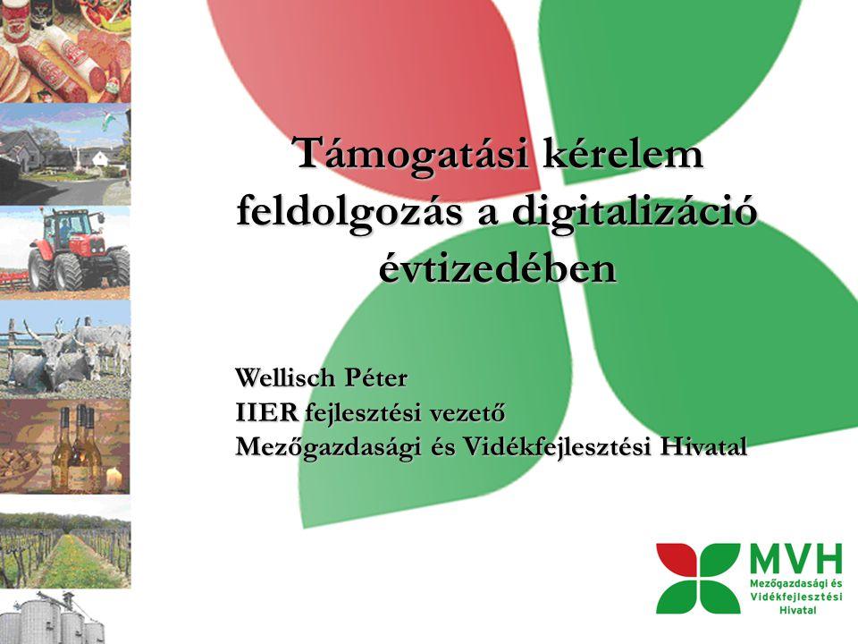 Támogatási kérelem feldolgozás a digitalizáció évtizedében