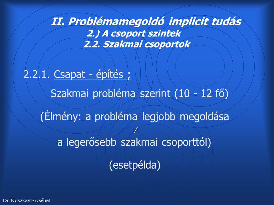 2.2.1. Csapat - építés ; Szakmai probléma szerint (10 - 12 fő)