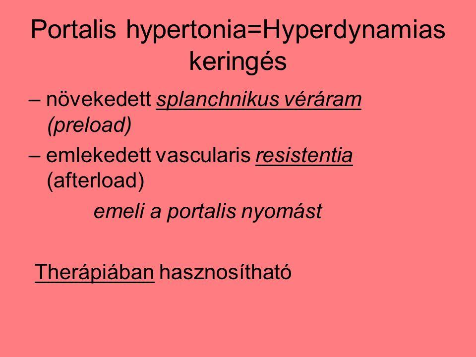 Portalis hypertonia=Hyperdynamias keringés