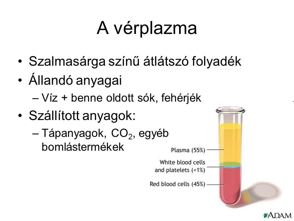 A vérplazma Szalmasárga színű átlátszó folyadék Állandó anyagai