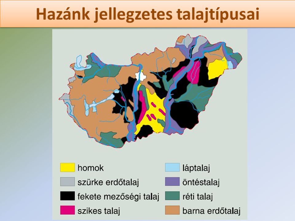 Hazánk jellegzetes talajtípusai