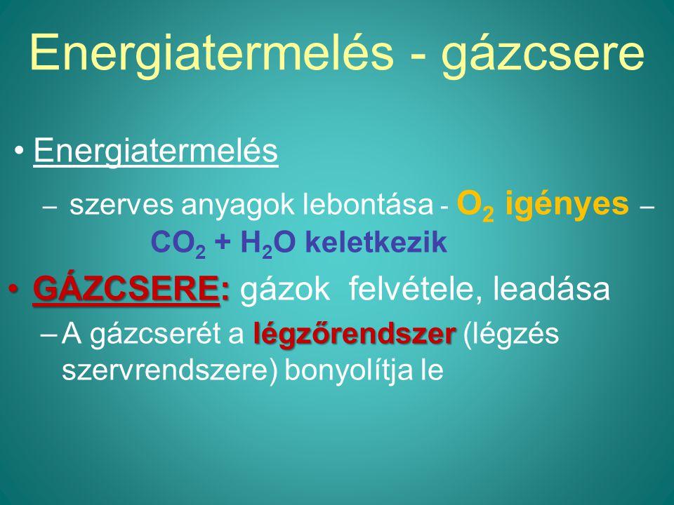 Energiatermelés - gázcsere