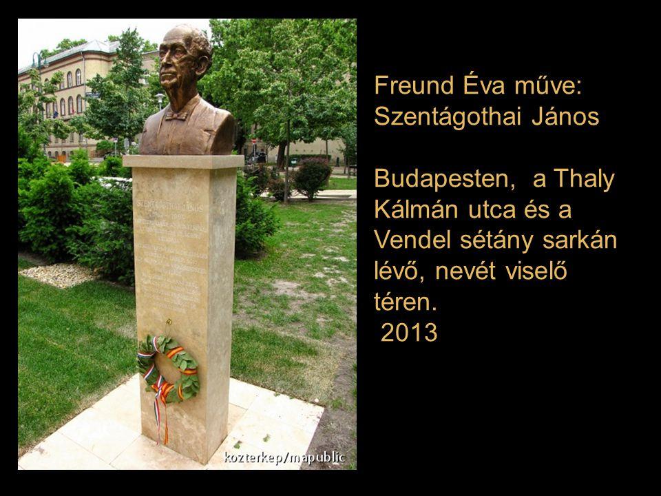 Freund Éva műve: Szentágothai János. Budapesten, a Thaly Kálmán utca és a Vendel sétány sarkán lévő, nevét viselő téren.