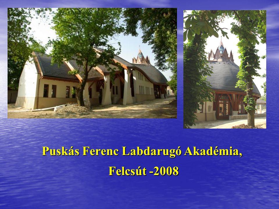 Puskás Ferenc Labdarugó Akadémia, Felcsút -2008