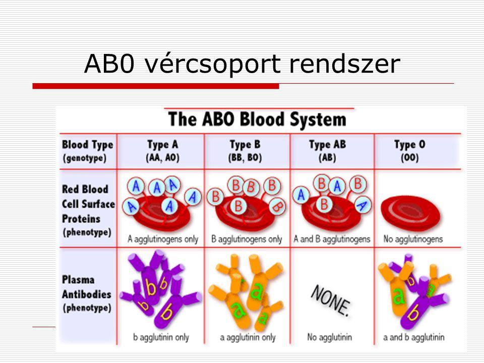 AB0 vércsoport rendszer