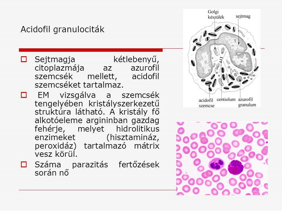 Acidofil granulociták