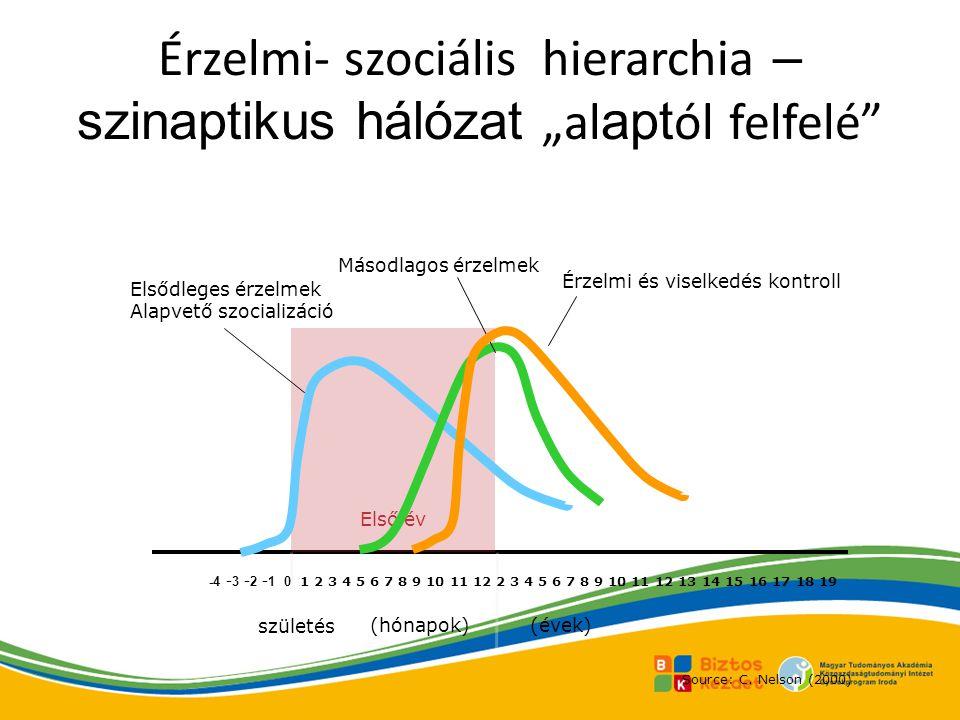 """Érzelmi- szociális hierarchia – szinaptikus hálózat """"alaptól felfelé"""