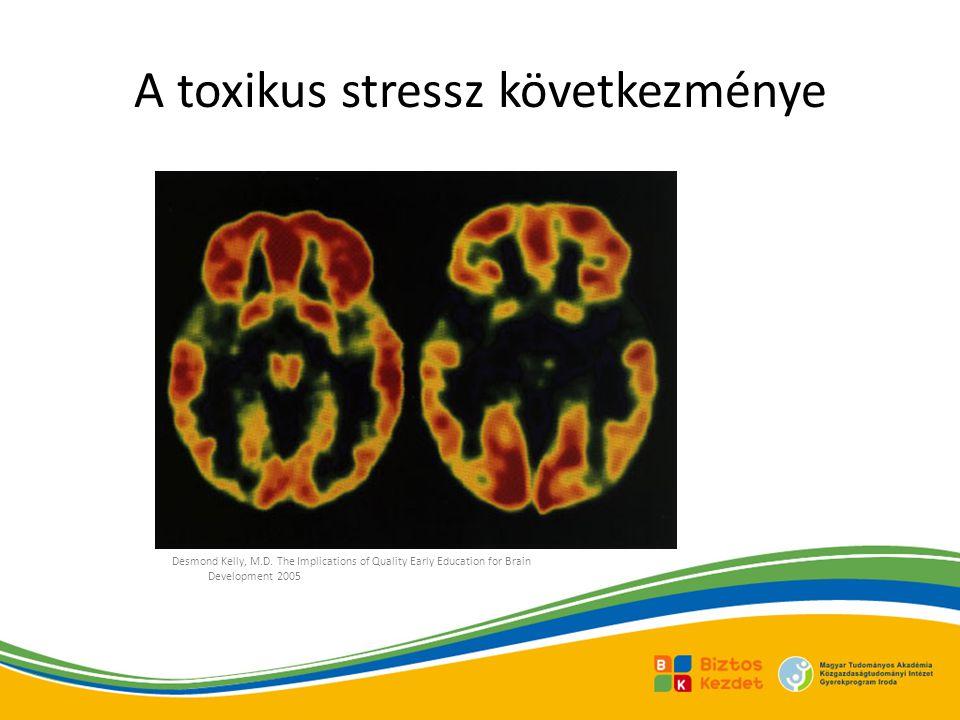 A toxikus stressz következménye
