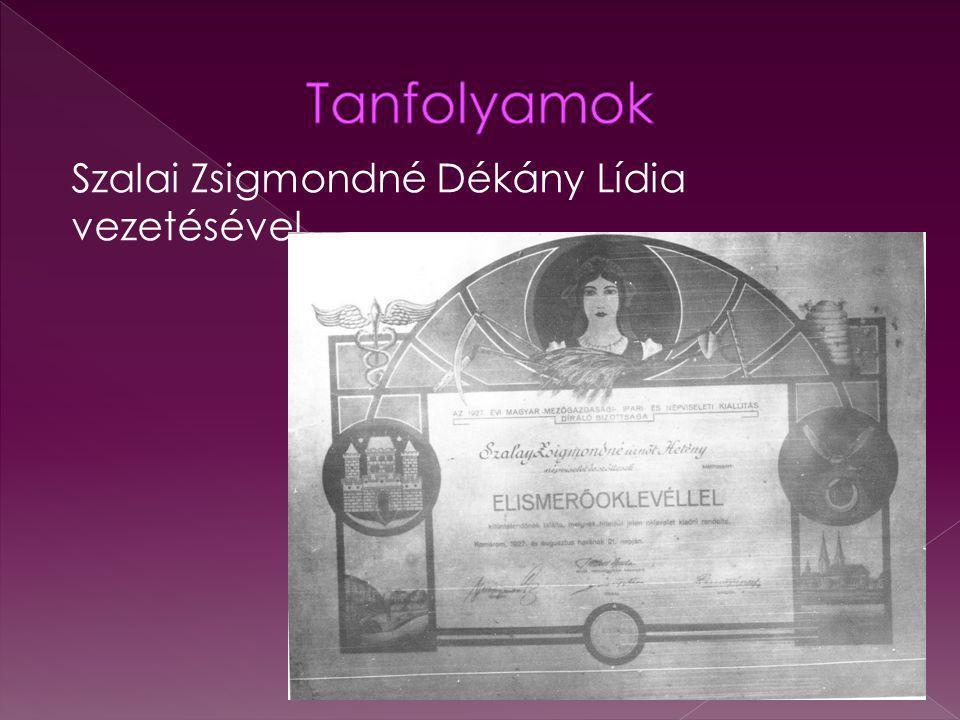 Tanfolyamok Szalai Zsigmondné Dékány Lídia vezetésével
