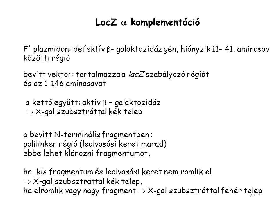 LacZ a komplementáció F plazmidon: defektív b- galaktozidáz gén, hiányzik 11- 41. aminosav. közötti régió.
