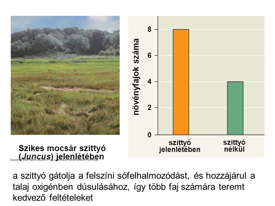 8 6. növényfajok száma. 4. 2. Figure 54.18 Facilitation by black rush (Juncus gerardi) in New England salt marshes.
