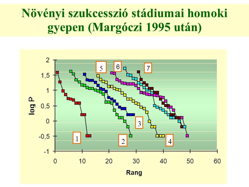 Növényi szukcesszió stádiumai homoki gyepen (Margóczi 1995 után)