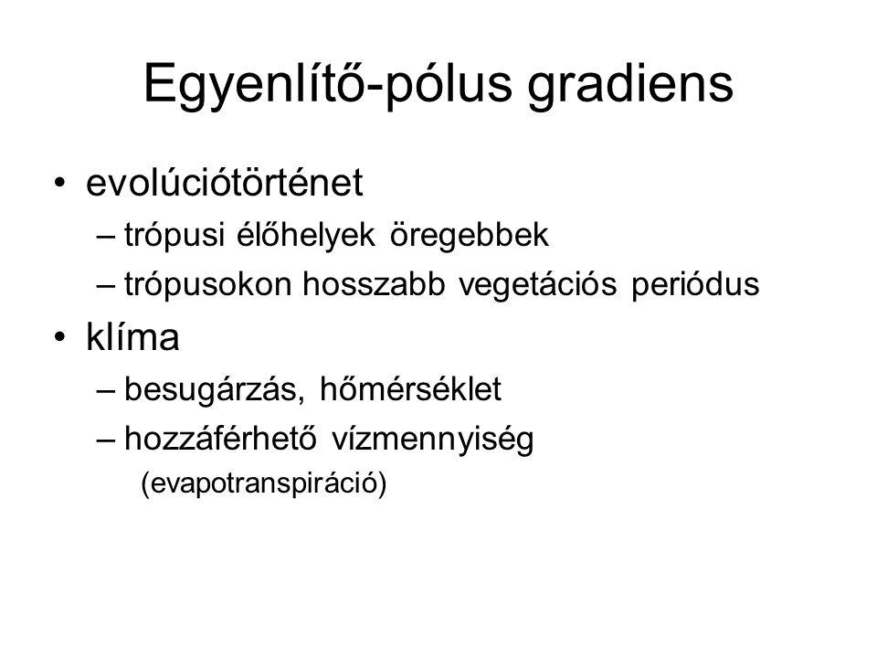 Egyenlítő-pólus gradiens