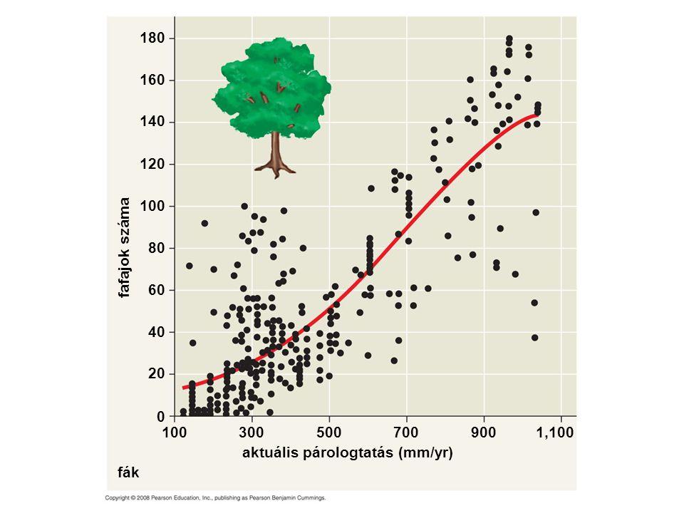 aktuális párologtatás (mm/yr) fák