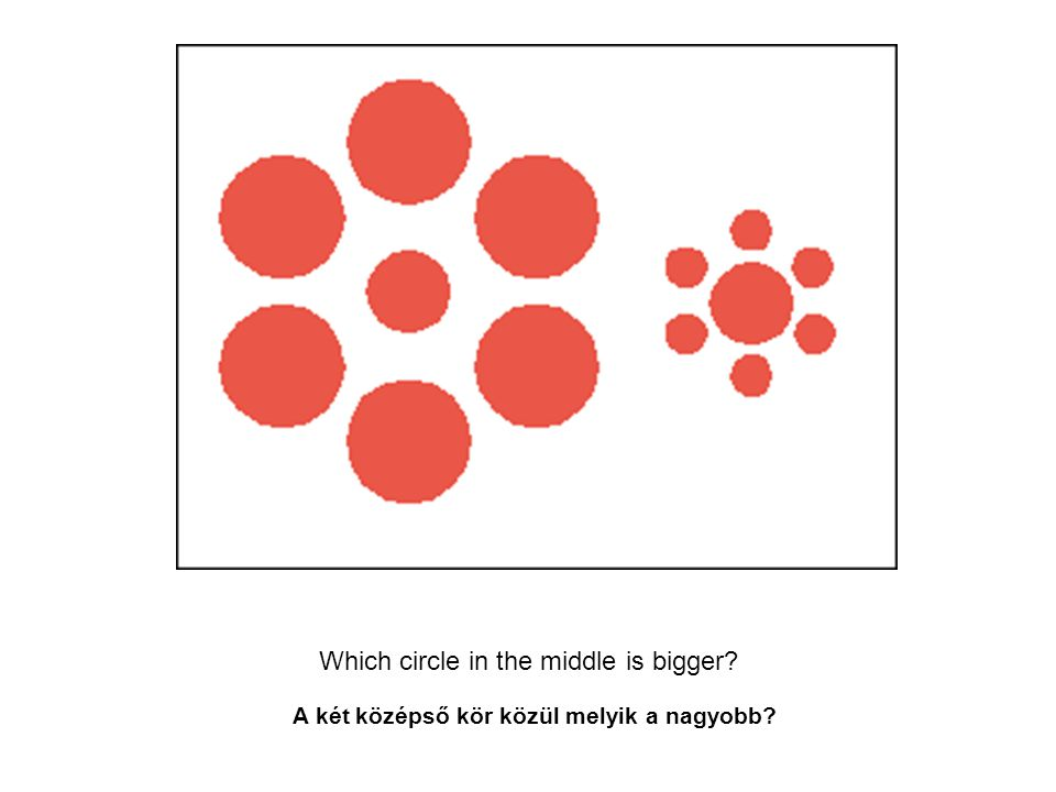 Which circle in the middle is bigger
