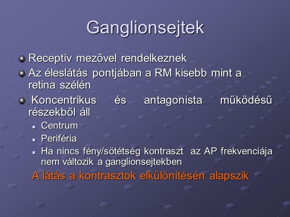 Ganglionsejtek Receptív mezővel rendelkeznek