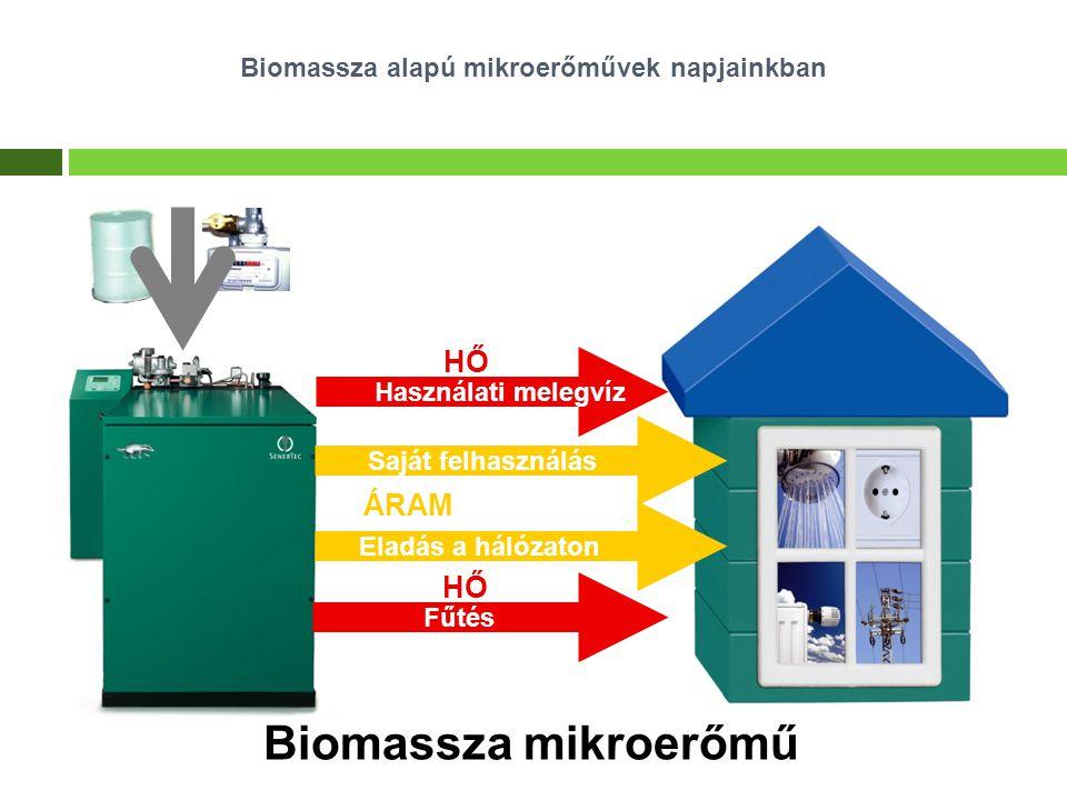 Biomassza alapú mikroerőművek napjainkban