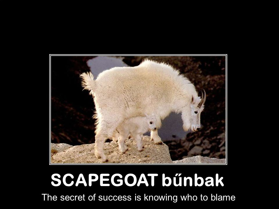 The secret of success is knowing who to blame