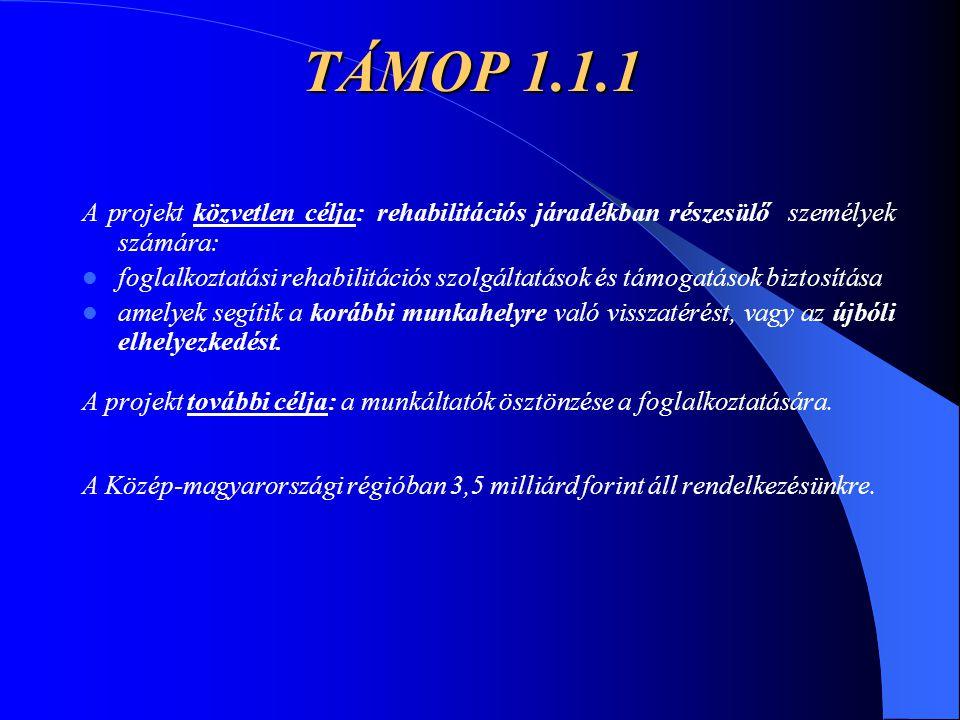 TÁMOP 1.1.1 A projekt közvetlen célja: rehabilitációs járadékban részesülő személyek számára: