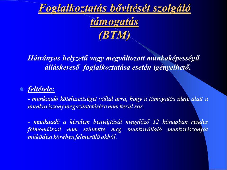 Foglalkoztatás bővítését szolgáló támogatás (BTM)