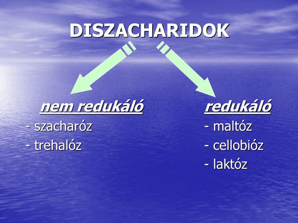 DISZACHARIDOK nem redukáló redukáló - szacharóz - maltóz