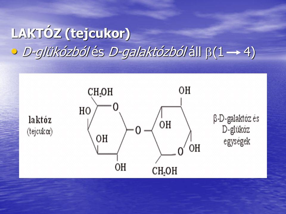 LAKTÓZ (tejcukor) D-glükózból és D-galaktózból áll (1 4)