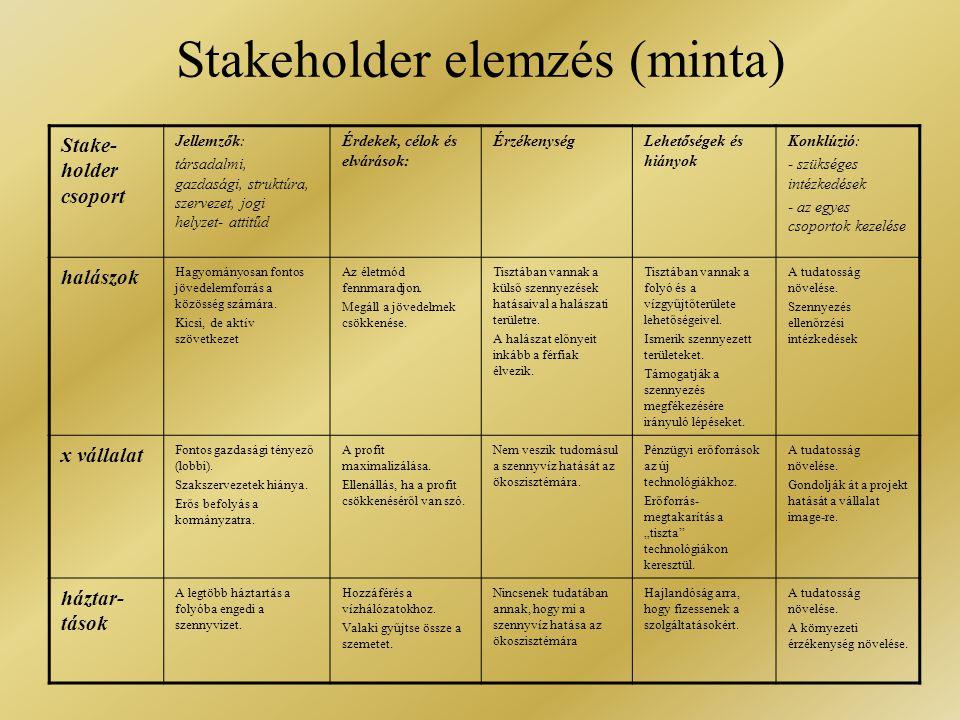 Stakeholder elemzés (minta)