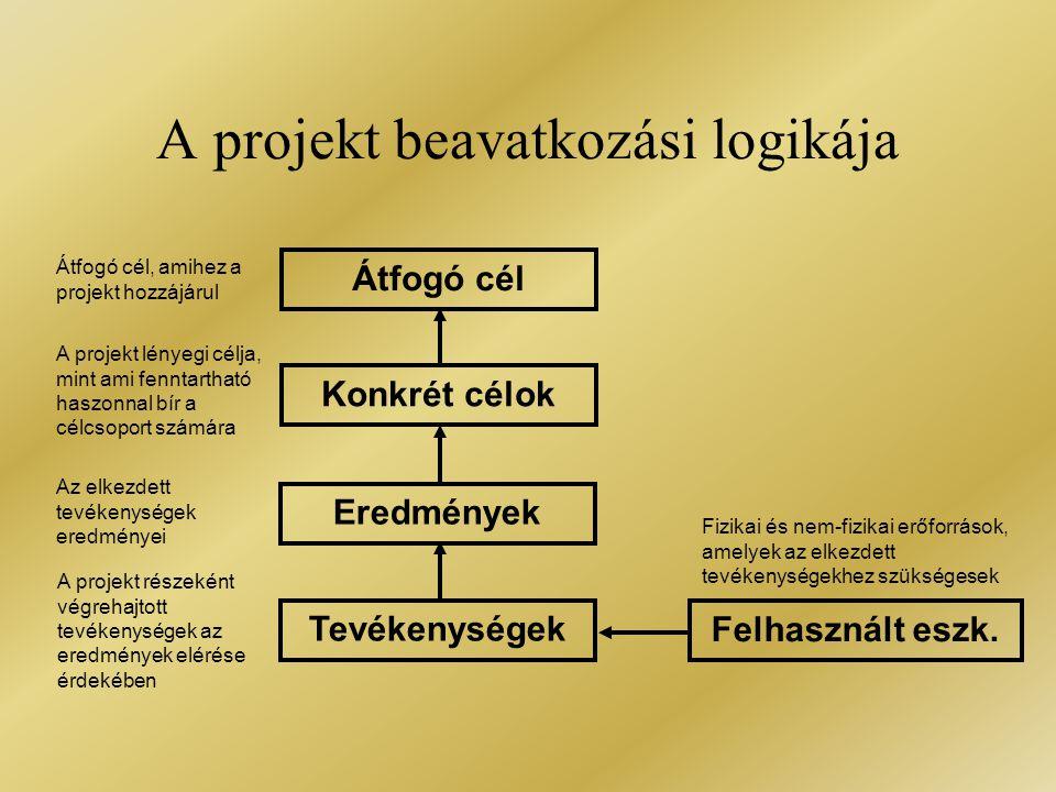 A projekt beavatkozási logikája