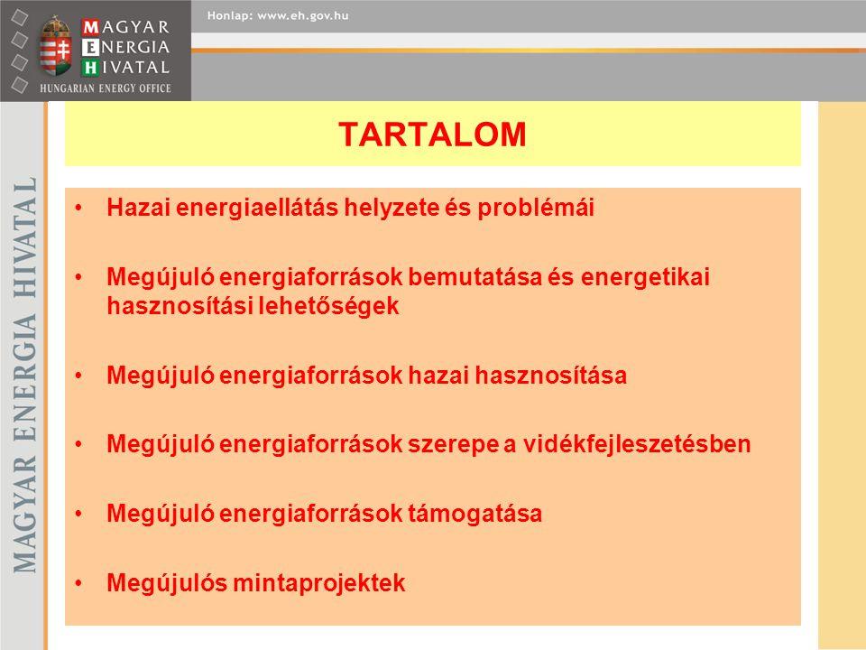 TARTALOM Hazai energiaellátás helyzete és problémái