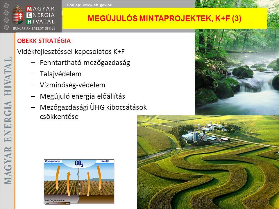 MEGÚJULÓS MINTAPROJEKTEK, K+F (3)