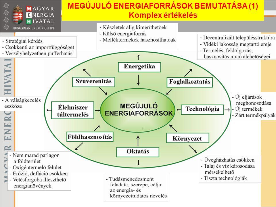 MEGÚJULÓ ENERGIAFORRÁSOK BEMUTATÁSA (1) Komplex értékelés