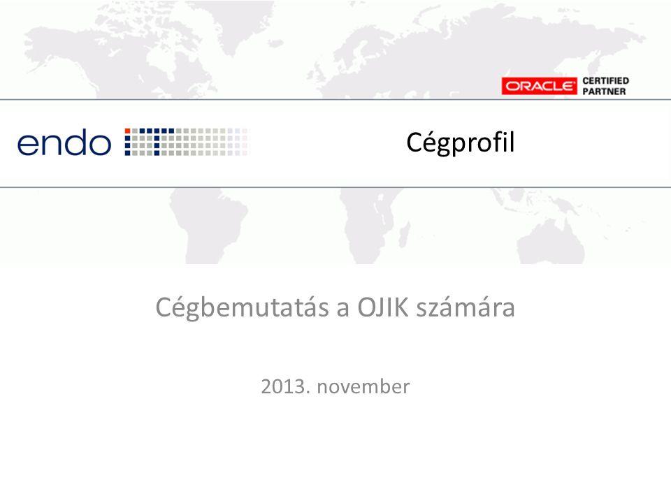 Cégbemutatás a OJIK számára 2013. november
